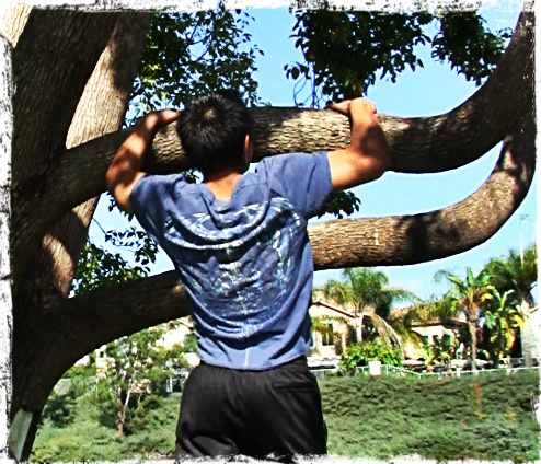 Tree Pull Ups - Pull Ups can Be Done Anywhere and Are Fundamental to Get Stronger!