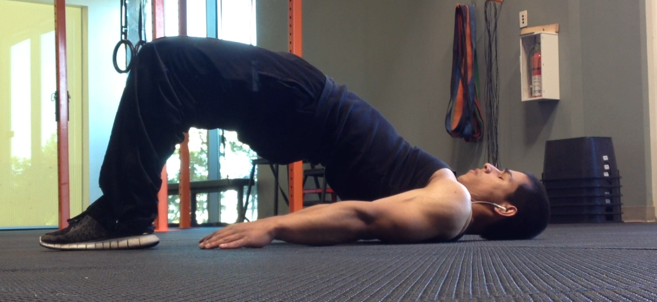 Hip/Glute Bridge